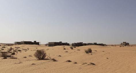 À Gaza, l'armée israélienne déverse des herbicides